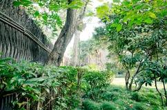 Φράκτης κήπων Στοκ Φωτογραφίες