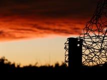 Φράκτης και ηλιοβασίλεμα κοτόπουλου Στοκ Εικόνες