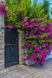 φράκτης και ρόδινα λουλούδια στοκ φωτογραφία