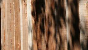 Φράκτης με τις σκιές των φύλλων φιλμ μικρού μήκους