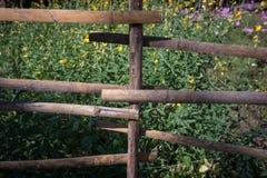 Φράκτης μπαμπού, διακοσμήσεις κήπων Στοκ εικόνες με δικαίωμα ελεύθερης χρήσης