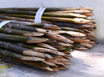 Φράκτης μπαμπού στύλων Στοκ φωτογραφίες με δικαίωμα ελεύθερης χρήσης