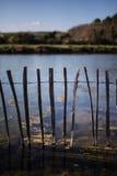 Φράκτης νερού Στοκ Εικόνα