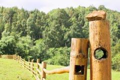 Φράκτης που γίνεται ξύλινος από το μπαμπού Και όμορφη φύση στοκ φωτογραφία με δικαίωμα ελεύθερης χρήσης