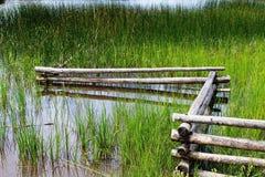 Φράκτης στη λίμνη Στοκ εικόνα με δικαίωμα ελεύθερης χρήσης