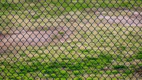 Φράκτης συνδέσεων αλυσίδων σε ένα αθλητικό πάρκο με το χλοώδη τομέα πίσω από το στοκ φωτογραφία με δικαίωμα ελεύθερης χρήσης
