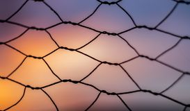 Φράκτης συνδέσεων αλυσίδων στο ηλιοβασίλεμα με το ρηχό βάθος του τομέα Στοκ Εικόνες