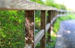 Φράκτης του κήπου Στοκ εικόνα με δικαίωμα ελεύθερης χρήσης