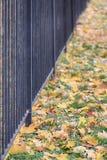 Φράκτης του πάρκου Στοκ εικόνες με δικαίωμα ελεύθερης χρήσης