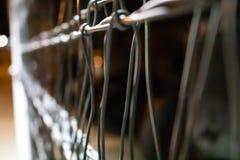 Φράκτης Chainlink στοκ φωτογραφία με δικαίωμα ελεύθερης χρήσης