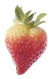 φράουλα αγάπης καρδιών Στοκ φωτογραφία με δικαίωμα ελεύθερης χρήσης