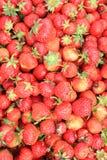 φράουλα ανασκόπησης Στοκ φωτογραφίες με δικαίωμα ελεύθερης χρήσης