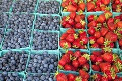 φράουλα βακκινίων στοκ φωτογραφία