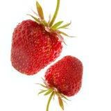 φράουλα δύο Στοκ Εικόνες