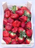 φράουλα κιβωτίων Στοκ φωτογραφία με δικαίωμα ελεύθερης χρήσης