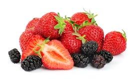 φράουλα μουριών μούρων Στοκ Εικόνα