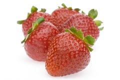 φράουλα ομάδας Στοκ Εικόνα