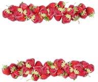 φράουλα πλαισίων Στοκ Φωτογραφία
