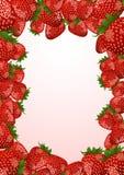 φράουλα πλαισίων Στοκ εικόνες με δικαίωμα ελεύθερης χρήσης