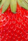 Φράουλα που απομονώνεται Στοκ Φωτογραφία