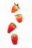Φράουλα που απομονώνεται Στοκ εικόνες με δικαίωμα ελεύθερης χρήσης