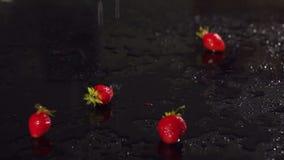 Φράουλα που αφορά την υγρή μαύρη επιφάνεια, αργό MO απόθεμα βίντεο