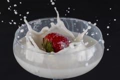 Φράουλα που περιέρχεται σε ένα γυαλί που γεμίζουν με το γάλα στοκ εικόνα με δικαίωμα ελεύθερης χρήσης