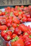 φράουλα πώλησης Στοκ Εικόνες