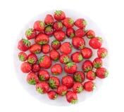Φράουλα σε ένα πιάτο. Στοκ Εικόνες