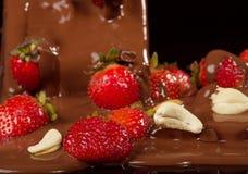 φράουλα σοκολάτας Στοκ Εικόνες
