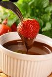 φράουλα σοκολάτας Στοκ Φωτογραφίες