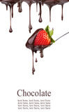 φράουλα σοκολάτας Στοκ φωτογραφίες με δικαίωμα ελεύθερης χρήσης