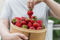 Φράουλα στο ξύλινο καλάθι Στοκ Εικόνες