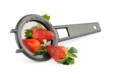 φράουλα τρυπητών Στοκ Εικόνα
