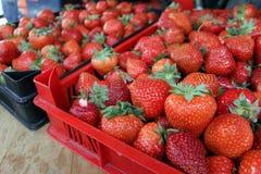 Φράουλα Φρέσκες οργανικές φράουλες στο φως της ημέρας σε μια αγορά Ανασκόπηση καρπών τρόφιμα υγιή Ανασκόπηση φραουλών Στοκ Εικόνα