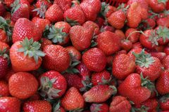 Φράουλα Φρέσκες οργανικές φράουλες στο φως της ημέρας σε μια αγορά Ανασκόπηση καρπών τρόφιμα υγιή Ανασκόπηση φραουλών Στοκ φωτογραφία με δικαίωμα ελεύθερης χρήσης