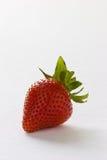 φράουλα Στοκ Εικόνα