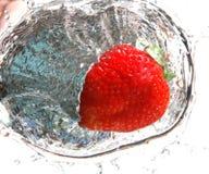 φράουλα 4 παφλασμών στοκ φωτογραφία με δικαίωμα ελεύθερης χρήσης