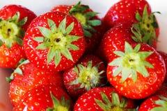 Φράουλα ` s Στοκ φωτογραφίες με δικαίωμα ελεύθερης χρήσης