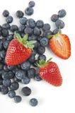 φράουλες βακκινίων Στοκ Εικόνες