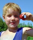 φράουλες επιλογής το&upsilon Στοκ Εικόνες