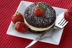 φράουλες κέικ Στοκ εικόνα με δικαίωμα ελεύθερης χρήσης