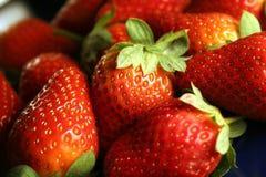 φράουλες καρπού Στοκ Εικόνες