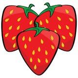 φράουλες κινούμενων σχ&epsilo απεικόνιση αποθεμάτων