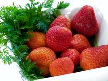 φράουλες κύπελλων στοκ φωτογραφίες με δικαίωμα ελεύθερης χρήσης