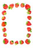 φράουλες πλαισίων Στοκ φωτογραφία με δικαίωμα ελεύθερης χρήσης