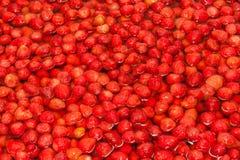 Φράουλες που ενυδατώνονται κόκκινες στο νερό για να κάνει τη μαρμελάδα Στοκ φωτογραφία με δικαίωμα ελεύθερης χρήσης