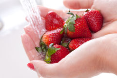 φράουλες που πλένουν τη γυναίκα Στοκ Φωτογραφίες