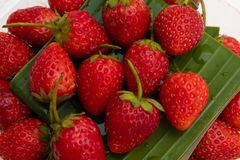 φράουλες σειράς τροφίμων ανασκόπησης Φράουλα τρόφιμα μπουλεττών ανασκόπησης πολύ κρέας πολύ Φυσικές φρέσκες φράουλες στοκ εικόνες