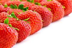 φράουλες σειρών στοκ εικόνες με δικαίωμα ελεύθερης χρήσης